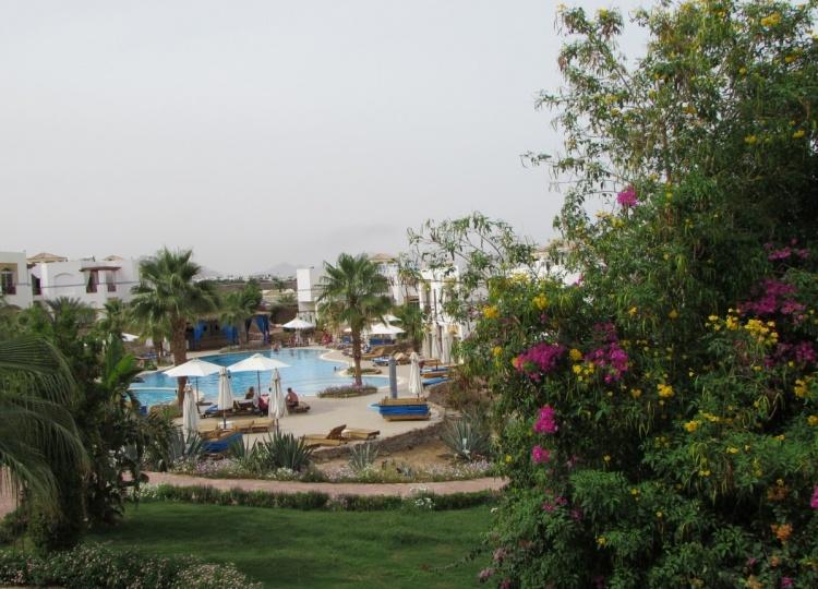 Погода весной в Египте