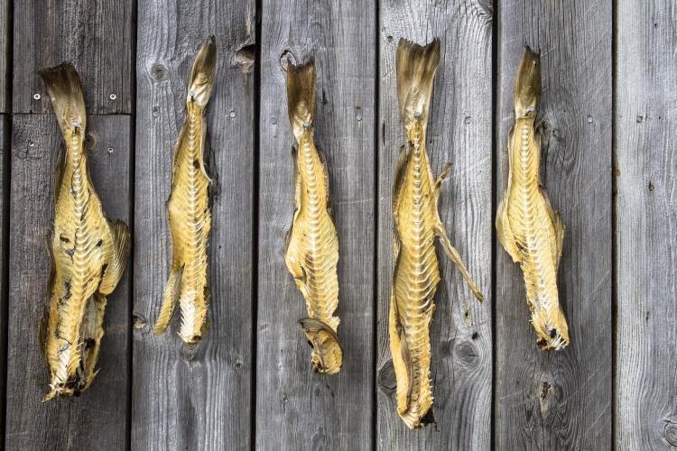 Рыбные блюда в Исландии