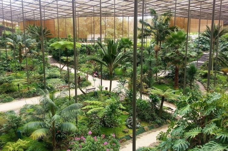 Оранжерея в парке Эдуарда VII