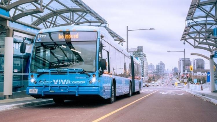Viva автобусы в Торонто