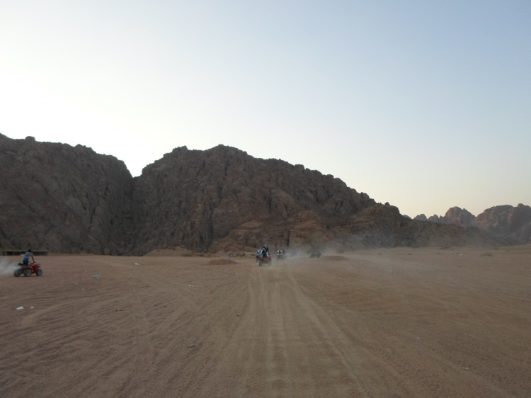 Сафари в Шарм-эль-Шейхе