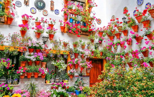 Праздники в Испании и популярные фестивали - изображение №1