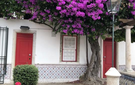 Обычаи и привычки в Португалии: как общаться и вести себя с местными жителями? - изображение №1
