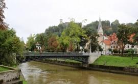 Любляны: районы города — описание, как добраться - изображение №3