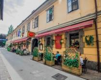 Любляны: кухня столицы — где и что поесть - изображение №2