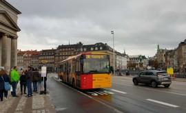 Все виды общественного транспорта в Копенгагене. Как пользоваться и оплачивать проезд? - изображение №2