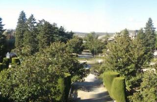 Сады Сабатини в Мадриде