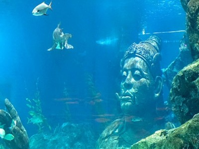 Океанариум Бангкока