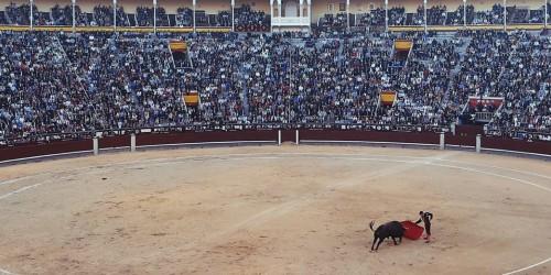 Испанская коррида: происхождение и традиции