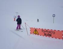 Обучение катанию на лыжах и сноуборде в Гудаури - изображение №2