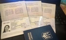 Нужны ли визы в Египет для украинцев, россиян? Таможенные правила - изображение №3