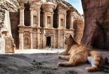 Экскурсии Шарм-эль-Шейх - изображение №6