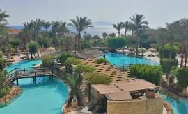 Лучшие отели Шарм-эль-Шейха - изображение №2