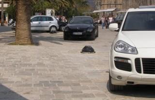 Аренда авто в Будве: особенности и стоимость