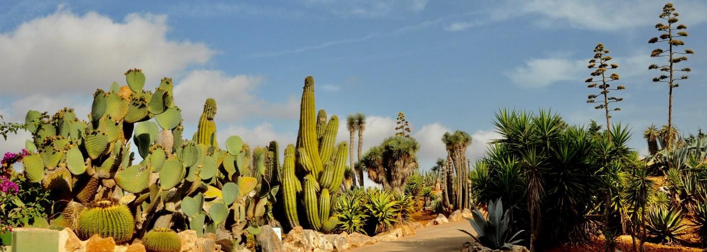 Ботанический сад Ботаникактус, Майорка
