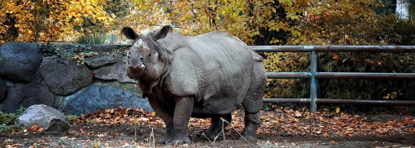 Зоопарк в Берлине