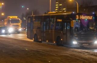 Общественный транспорт Рейкьявика: цена, особенности