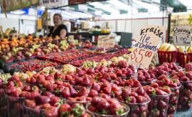 Еда в Монреале — гастрономической столице Канады - изображение №2