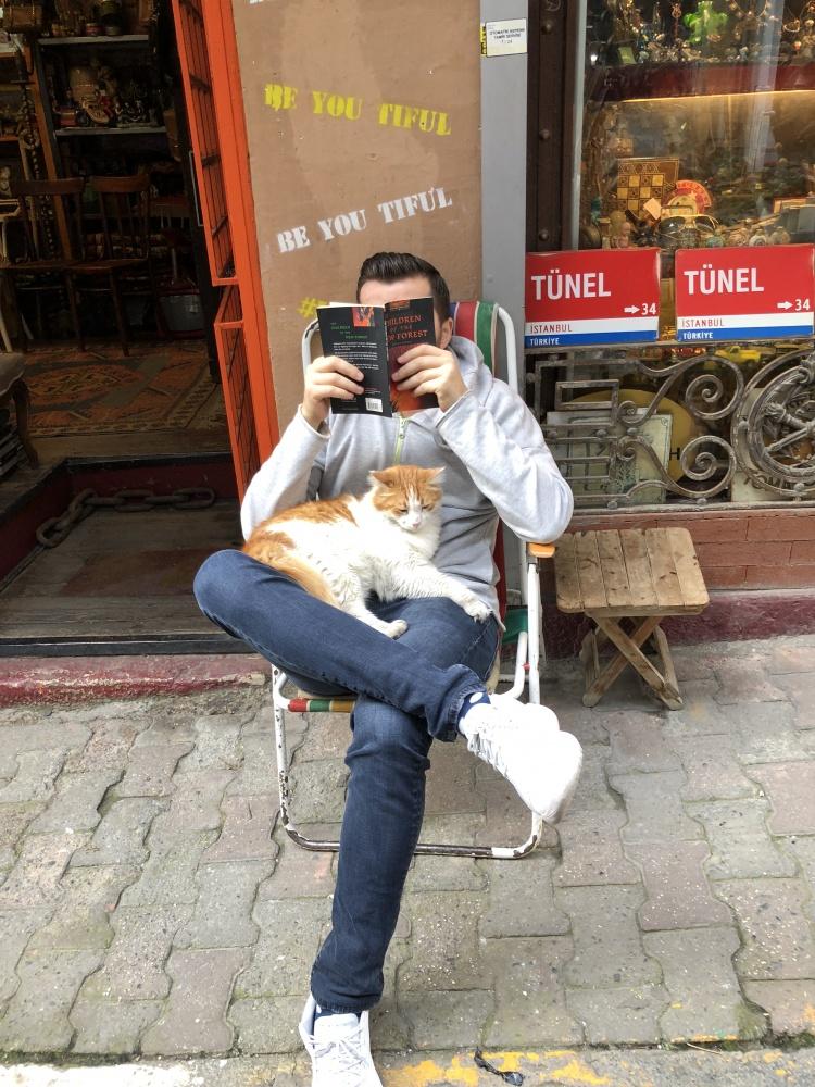 Город кошек, Стамбул