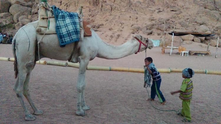 Деревня бедуинов, Египет