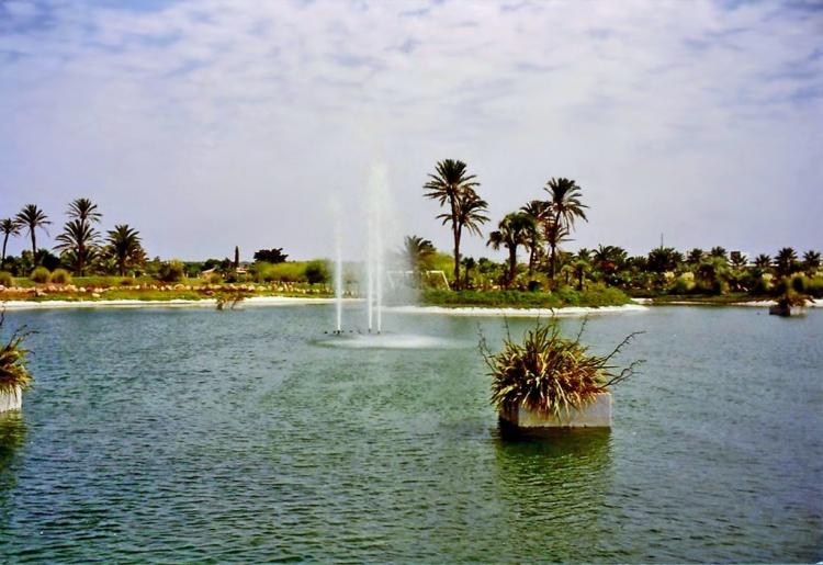 Ботанический сад Пальмы, что посмотреть