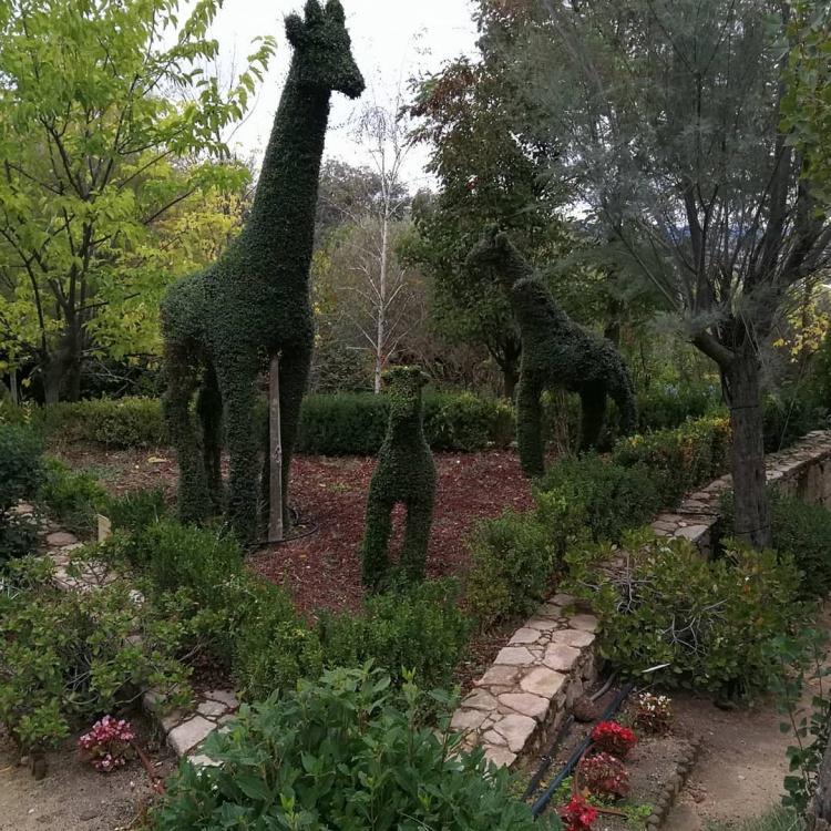 Ботанический сад Боску-Энкантадо