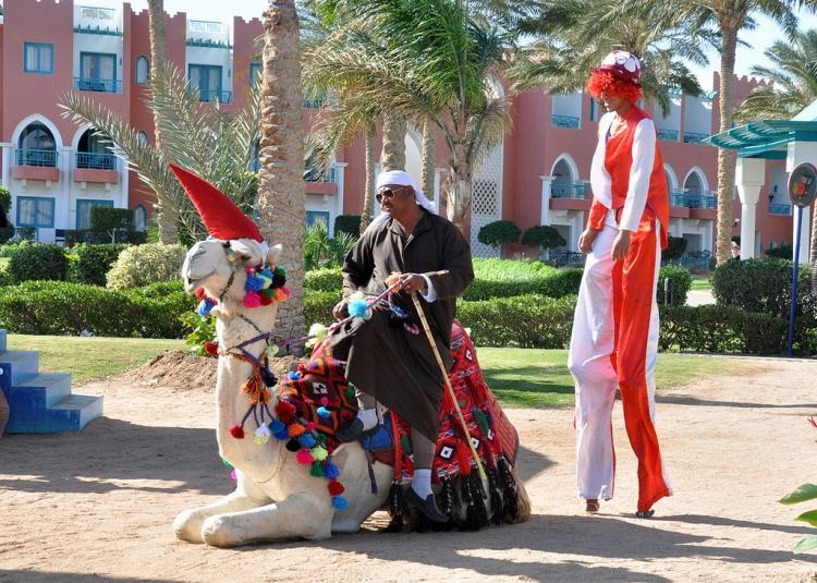 Новый год и Рождество в Египте