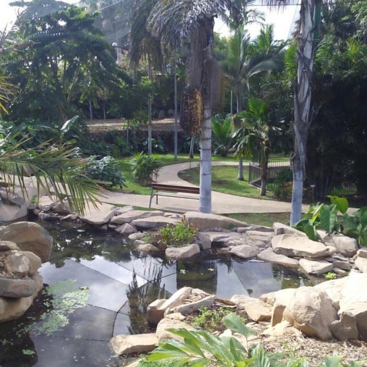 Ботанический сад, Тенерифе