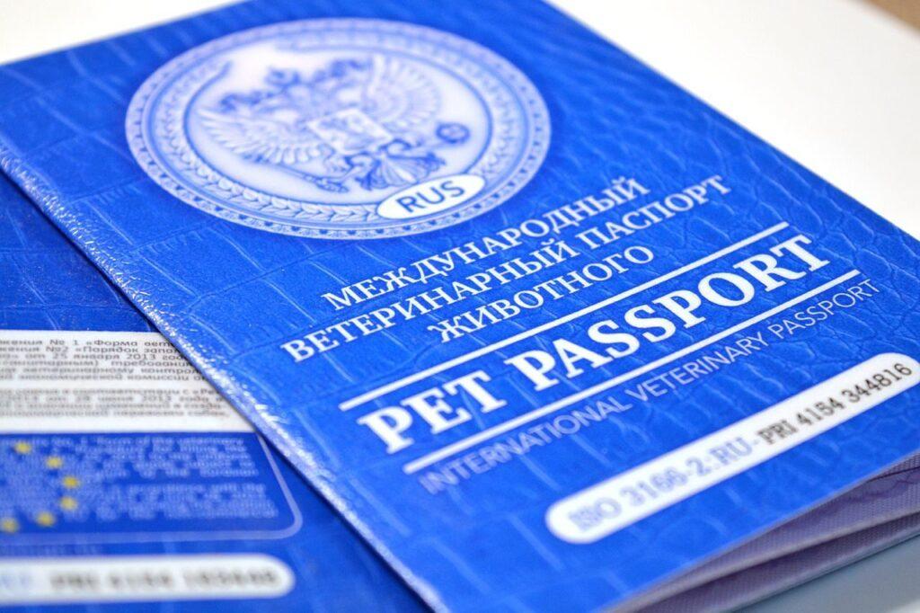 Вет паспорт для животного