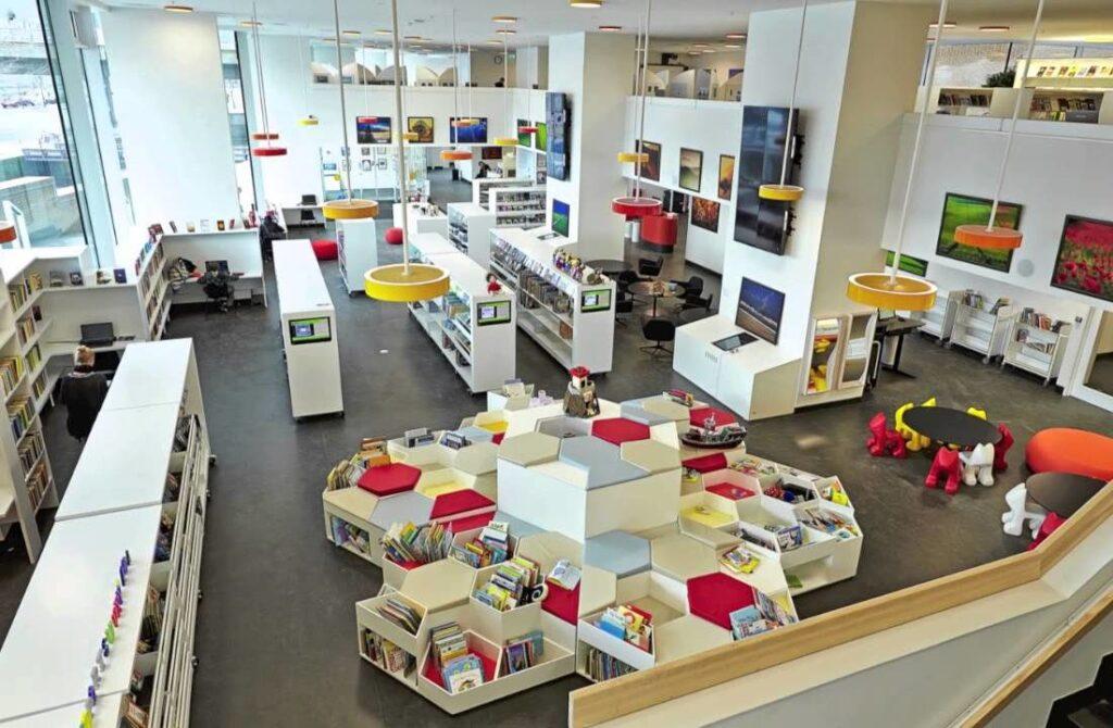 Государственный язык Дании - библиотека в Дании