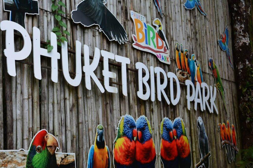 Что посмотреть на Пхукет Чалонг - Парк птиц Пхукет