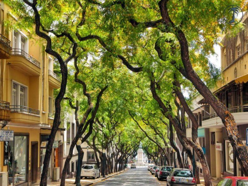 Мадейра, Фуншал фото