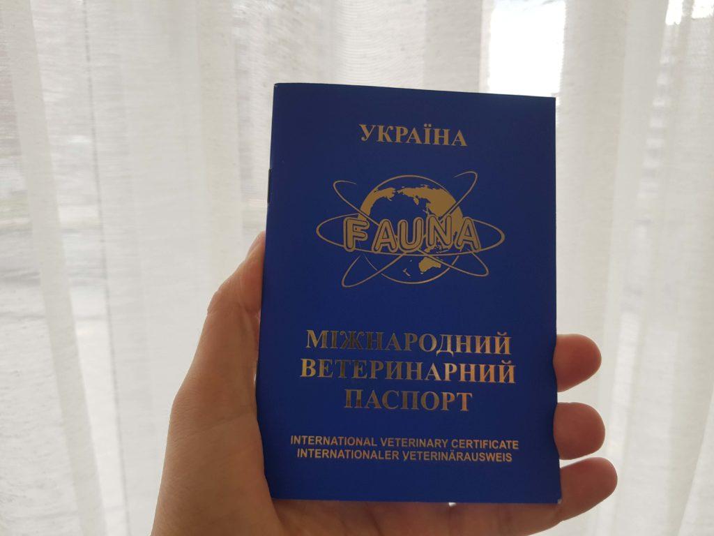 Ветеринарный паспорт Международного образца
