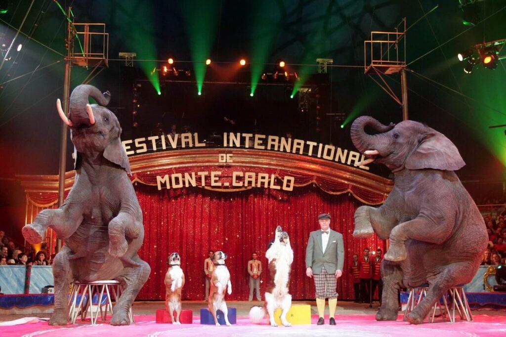 Цирк в Монако
