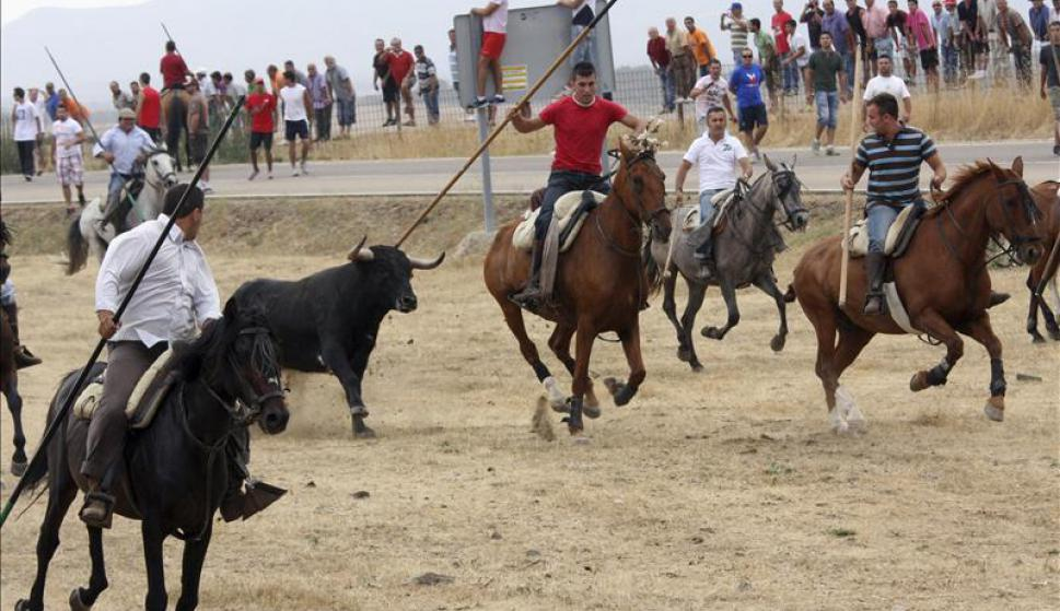 Испания шоу Бычьего Карнавала - Encierro a caballo