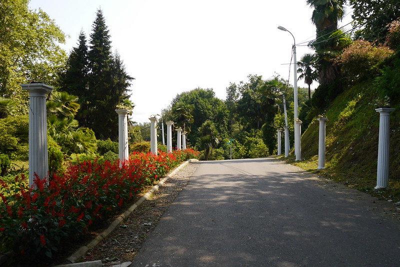 Botanical Garden Batumi