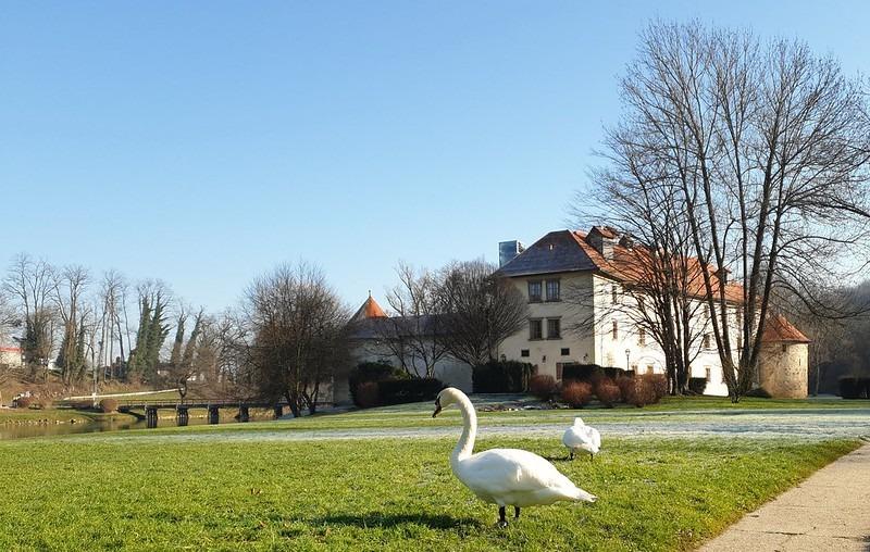 Оточецкий парк, Словения