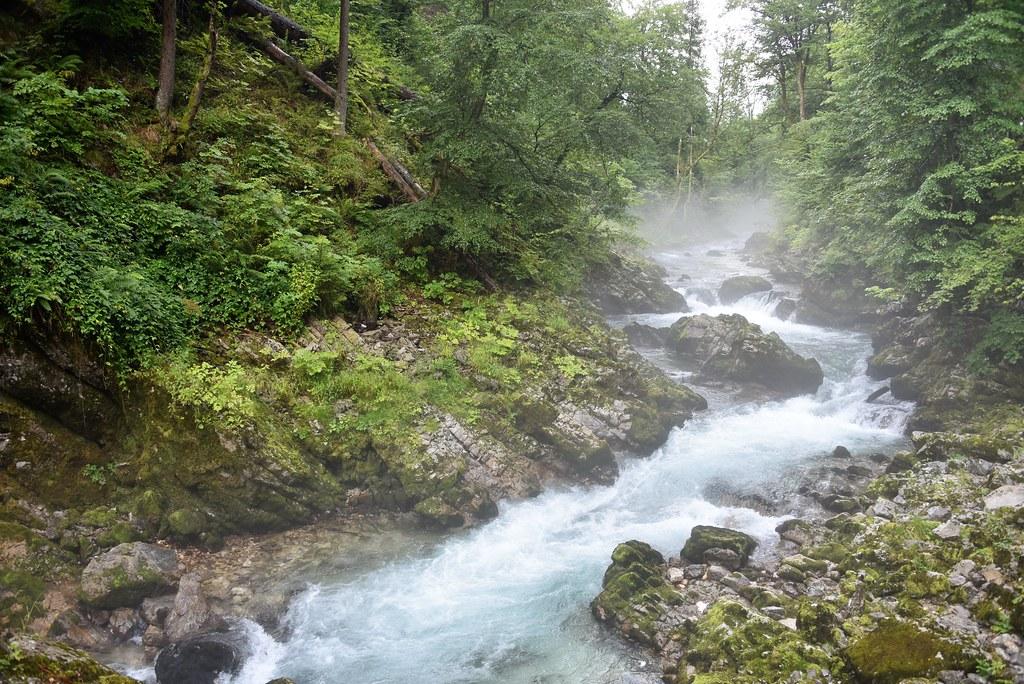 Особенности природы в Словении