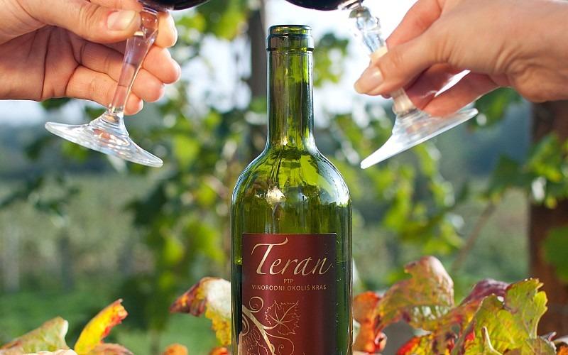 Вино Kras Teran Словения