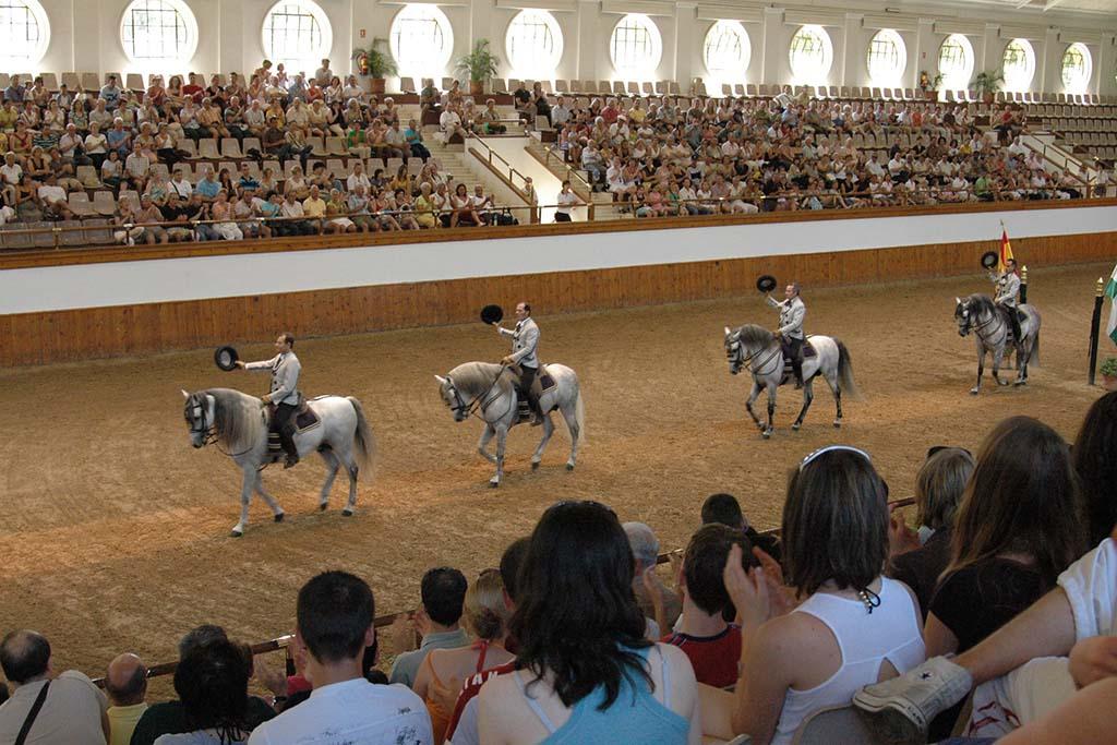 Отдых с детьми в Испании — конная прогулка