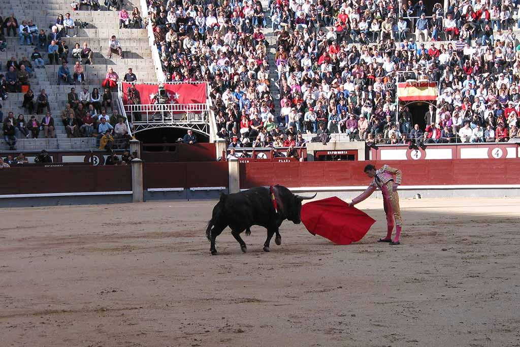 Какие места выбрать для просмотра боя быков — Лас Вентас, Мадрид