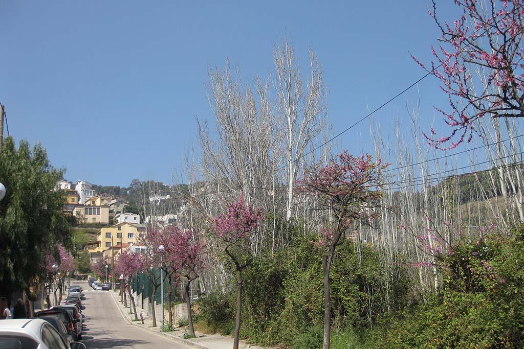 Погода в марте в Барселоне