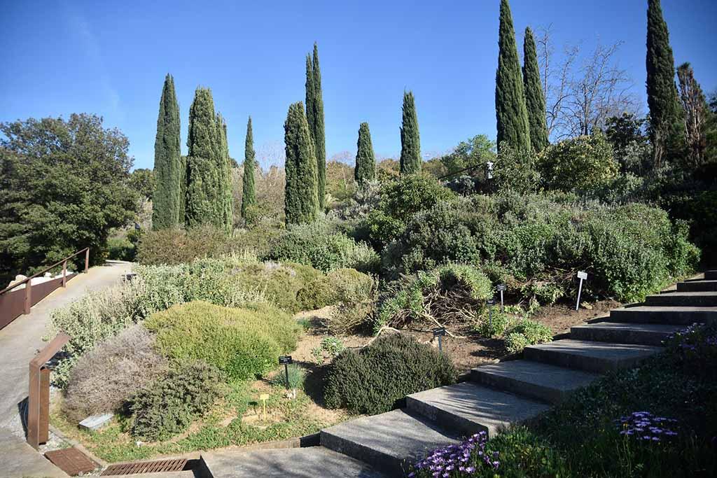 Достопримечательность Барселоны — ботанический сад