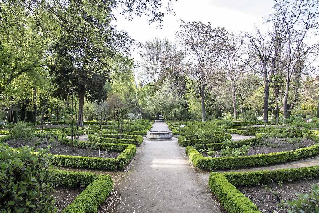 Когда лучше посетить Ботанический сад Мадрида — Real Jardín Botánico de Madrid