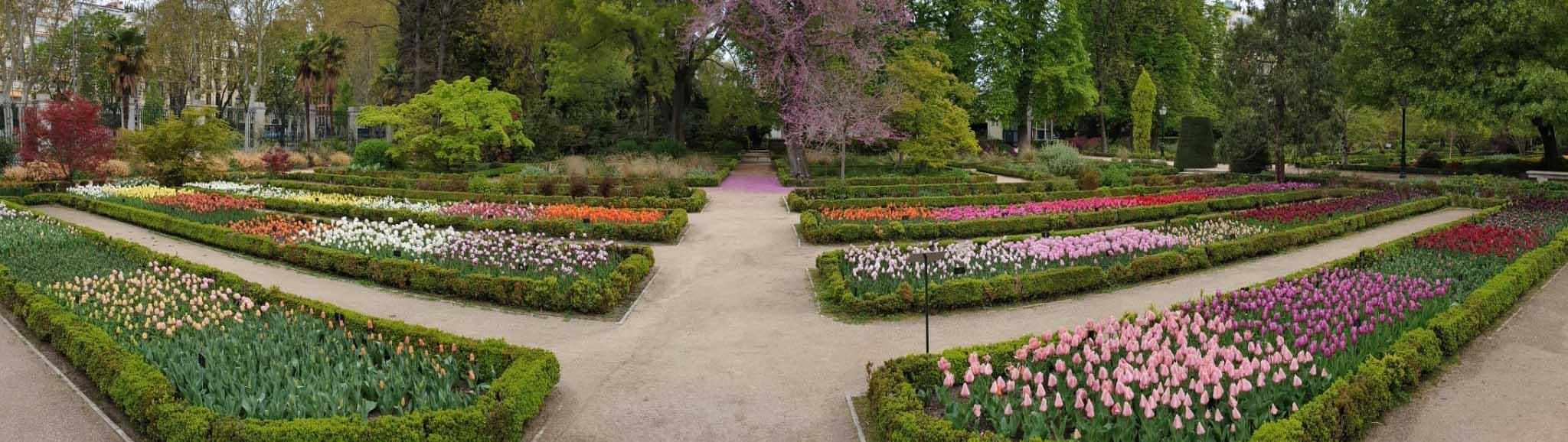 Королевский ботанический сад, Мадрид