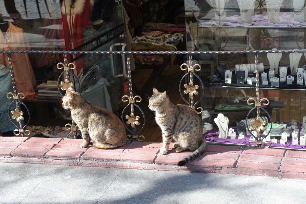 Посетители кафе Стамбула