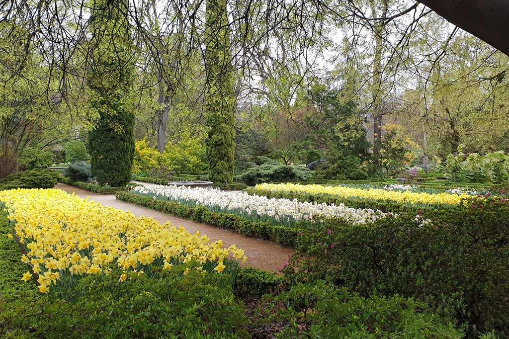 Ботанический сад в Мадриде, Испания