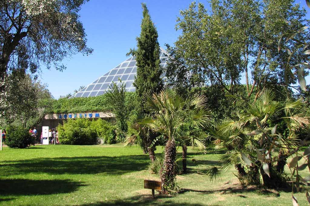Зоо-аквариум в Мадриде, когда лучше посетить