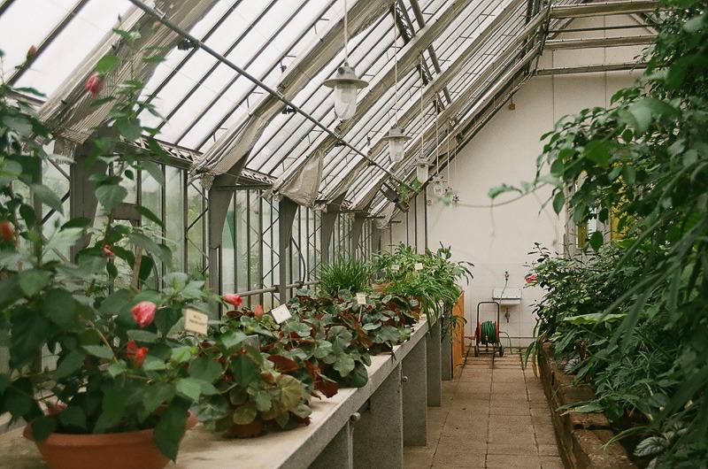 Любляна — ботанический сад