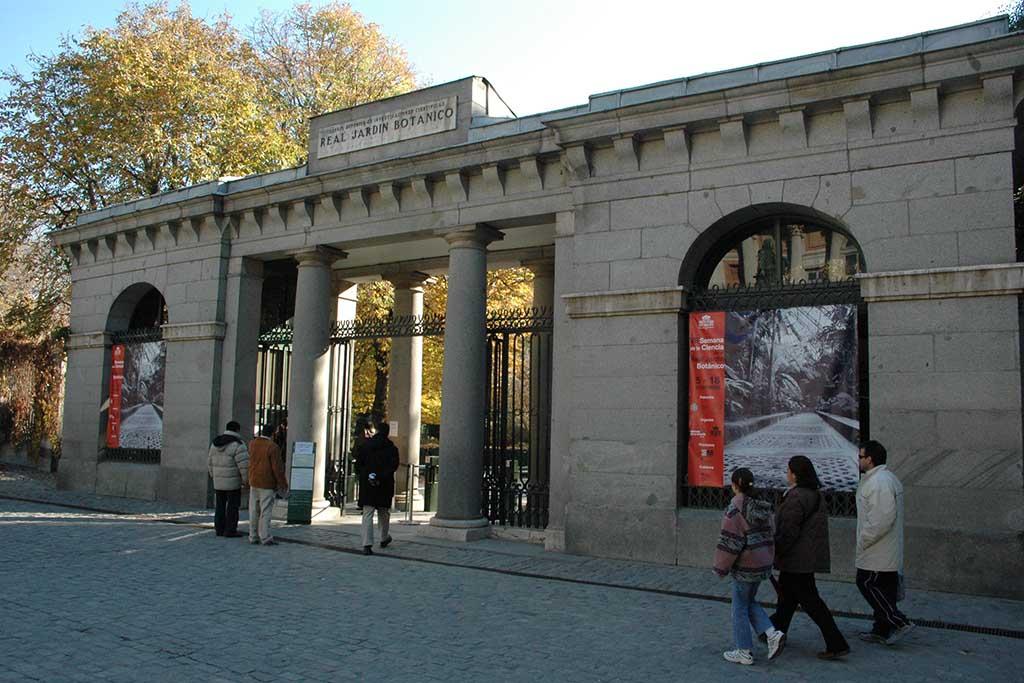 Сад в Мадриде — Real Jardin Botanico